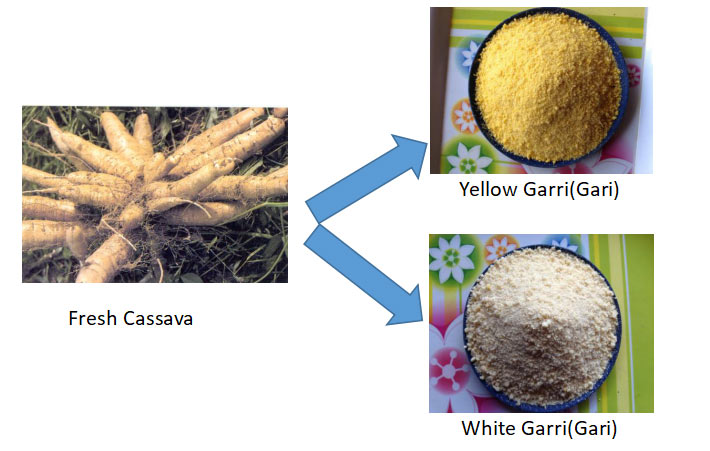 Garri Processing Machinery