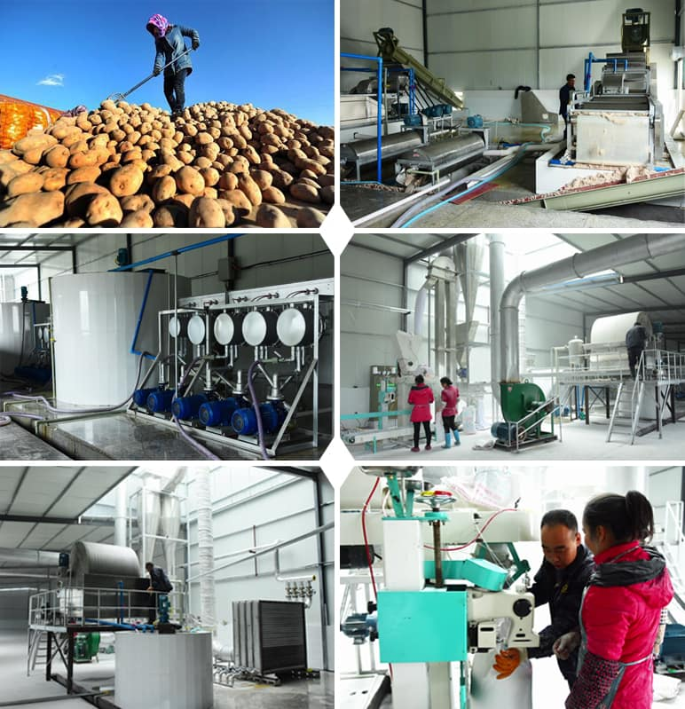 Project case : China local potato starch processing plant Capacity : 300tons per day input fresh potato Location: in China